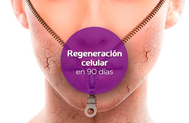 trofologia-regeneracion-celular